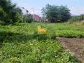 Teren de vanzare 929 mp teren in Selimbar la strada